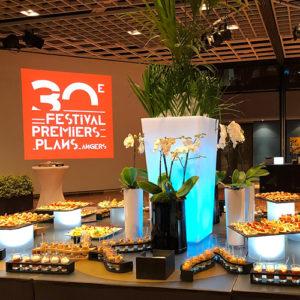 Pot de fleurs lumineux location Angers